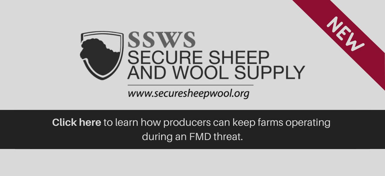 ssws-secure-sheep-and-wool